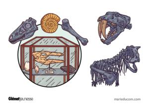 Paleontology-Book-1-Featured-Marie-Ducom-2019