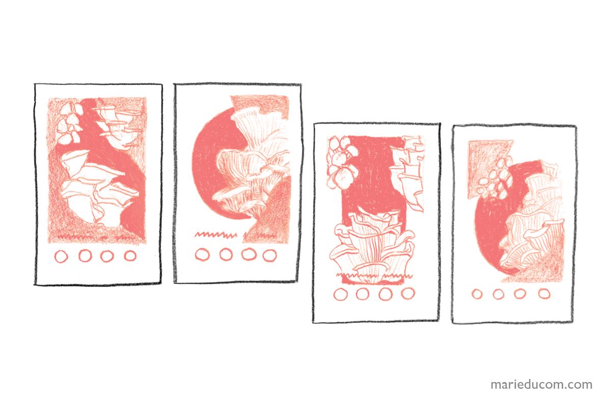 mushroom-sketches-02-marie-ducom-2015