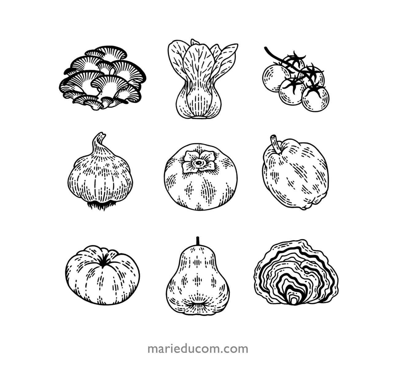 Fruits-vegetables-3-Marie-Ducom-2021