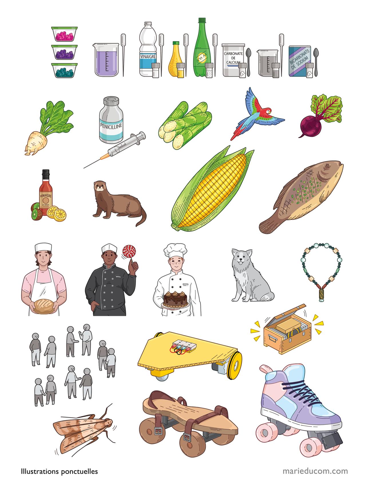 Projet-MERITE-illustrations 1bis-Marie-Ducom-2021